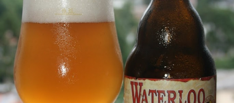 Waterloo 7 Tripel – 3,4
