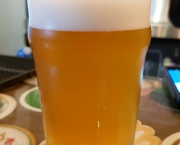Van Dutch Mosaic IPA – 3,7