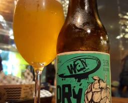 Way Beer Dry Hopped Berliner Weisse – 3,7
